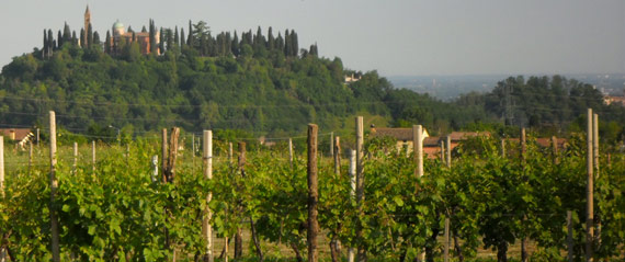 topbike-tuscan-cycling-holiday